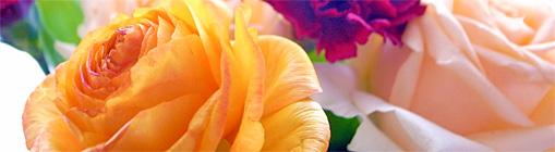 2011_03_19_flower.jpg