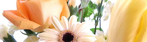 farewell_flower.jpg